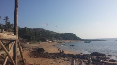 Anjuna Beachfish